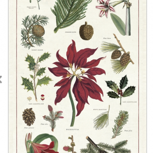 Vintage Botanical Christmas Tea Towel