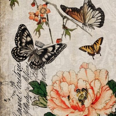 Roycycled Decoupage Papers Butterfly Floral