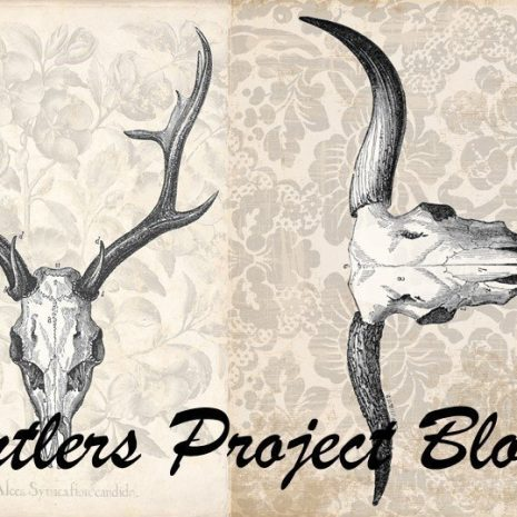 Antlers-Project