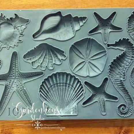 Seashells-IOD-Decor-Mould