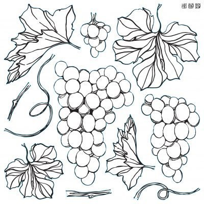 Grapes IOD Stamp
