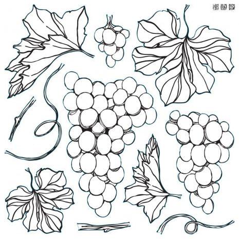 Grapes IOD Stamp
