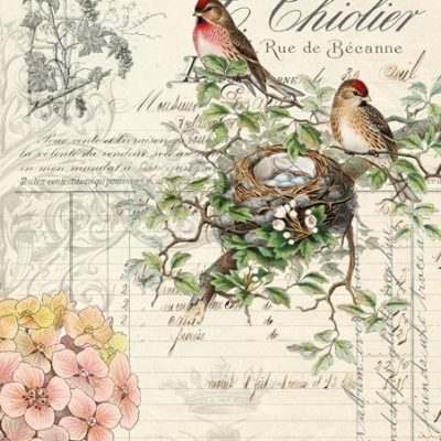 roycycled decoupage Bird Ephemera Paper